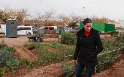 Agricultura de Castelló executa millores en horts urbans a petició dels propis usuaris