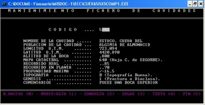 AÑO 1995 - Pantalla de datos del FICHERO MÚLTIPLE DE CAVIDADES - Programa QUICK-BASIC