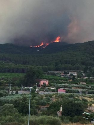 Última hora sobre l'incendi d'Artana per l'ajuntament d'Onda