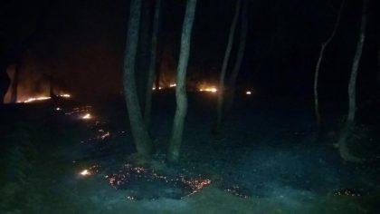 Intenten incendiar La Pinada d'Almenara