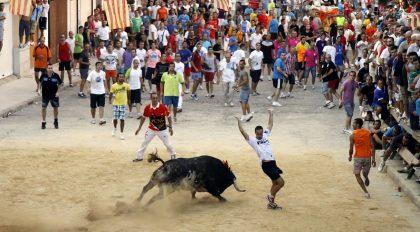 La Comunitat Valenciana organitza una trobada taurina per a tot el país
