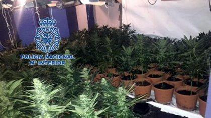 Detinguts per venda de marihuana a Vila-real