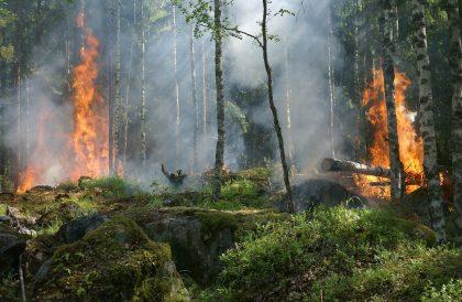 Un incendi forestal a l'Alcora mobilitza dos Avions Air Tractor