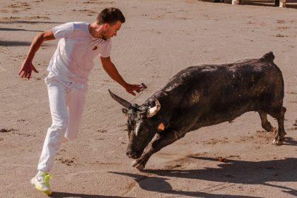 """Europa analitza el """"maltractament animal"""" a les festes amb bous de la Comunitat"""