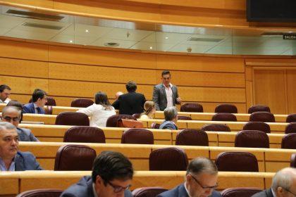 Compromís votarà que no en el Senat a l'aplicació de l'article 155