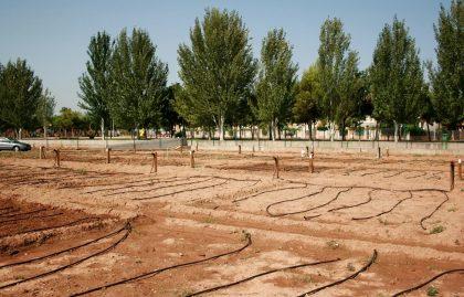 Almassora tornarà a sortejar 21 horts urbans després de complir-se el contracte de dos anys