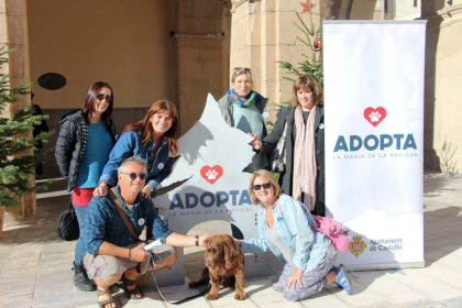 Castelló guanya el primer premi per un vídeo en favor de l'adopció de mascotes