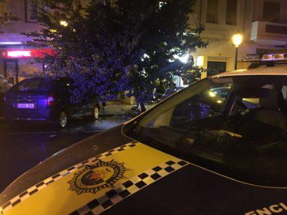 Cau un arbre a València a causa del temporal