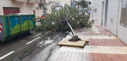 Benicàssim estima en quasi 90.000 euros els danys ocasionats per l'últim temporal en les platges i l'arbratge