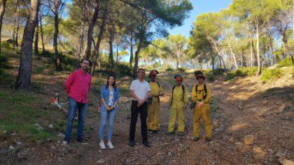 Orpesa 'neteja' sis hectàrees de zona forestal com a mesura de prevenció d'incendis