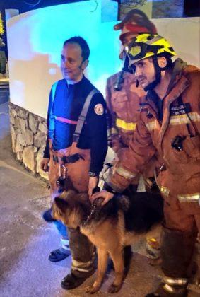 Rescaten a un gos en un barranc en el terme de Riba-roja