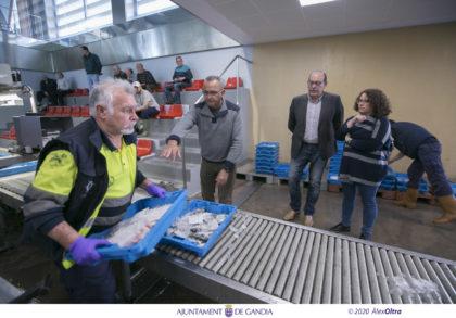 Gandia anima als ciutadans a consumir peix fresc
