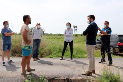 El cultiu de la xufa s'ha iniciat de manera experimental en 4 fanecades del terme municipal de Sagunt