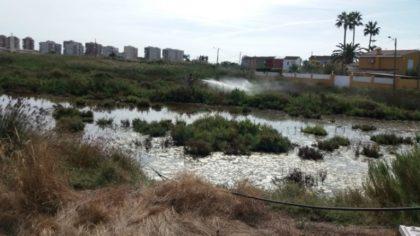 Benicàssim continua amb els tractaments contra mosquits en aigua estancada