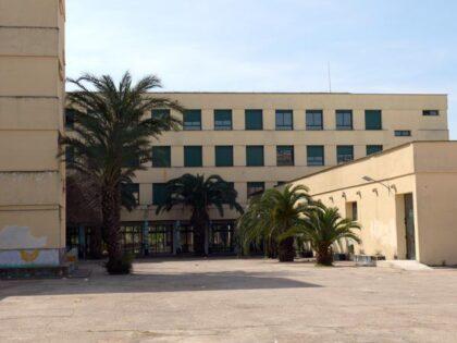 Institut Rei En Jaume, fins ara un anhel, en un futur una realitat – L'opinió de Fernando Pascual