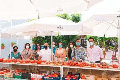 Els tomàquets de penjar de Castelló guanyen com a millors de la Comunitat Valenciana